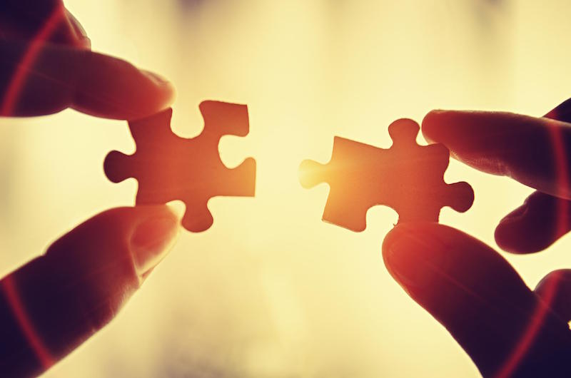 The Missing Pieces to the Chronic Pain Puzzle