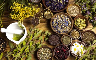 Top 5 Herbal Formulas for Health and Wellness
