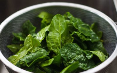 Going Green Helps You Live Longer